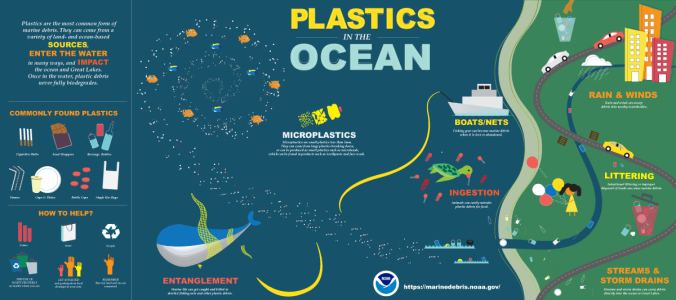 ORR_Plastic_In_the_Ocean_Infographic_FINAL