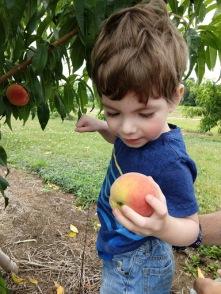 peach 4