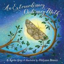 extraordinary ordinary