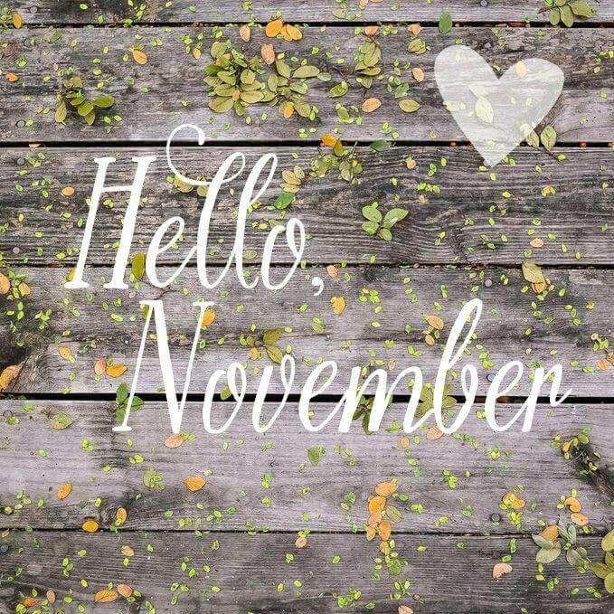 Hello November Still Life With Cracker Crumbs